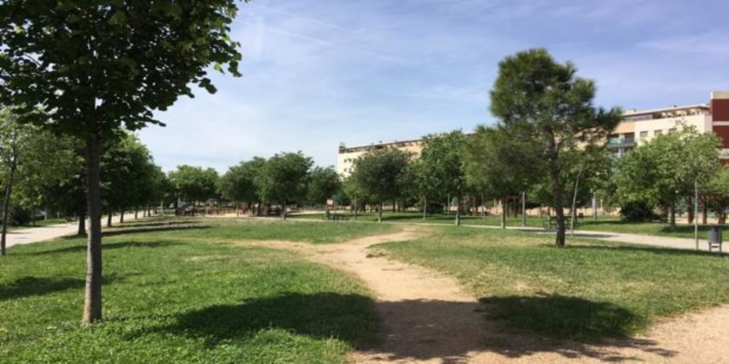 Two German shepherd puppies attack a group of girls in a park in Leganés
