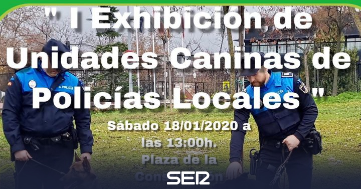 Sanse gathers this Saturday police dogs from 9 municipalities of Madrid | BE North Madrid | Time 14 North Madrid
