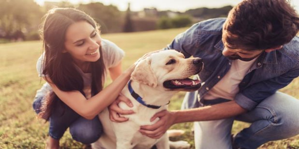 How your pet can influence your love relationship