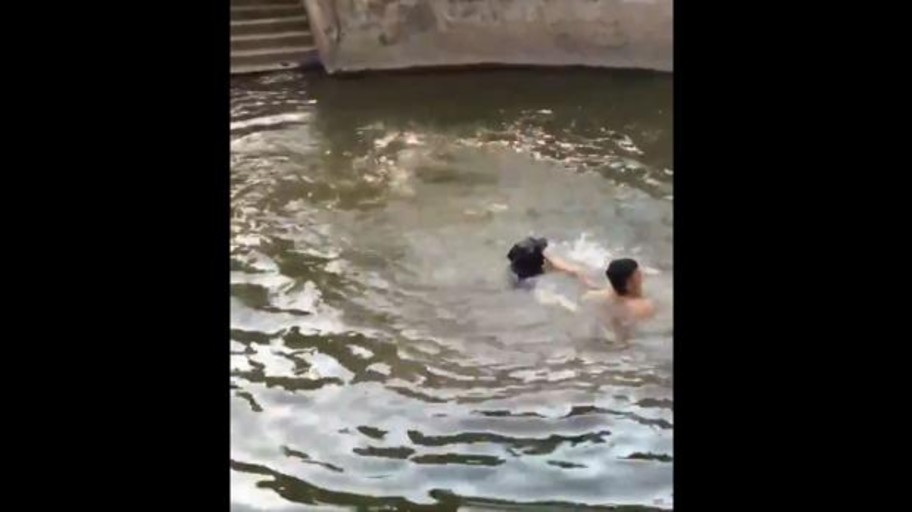 A man pretends to drown and his dog jumps into the water to save him
