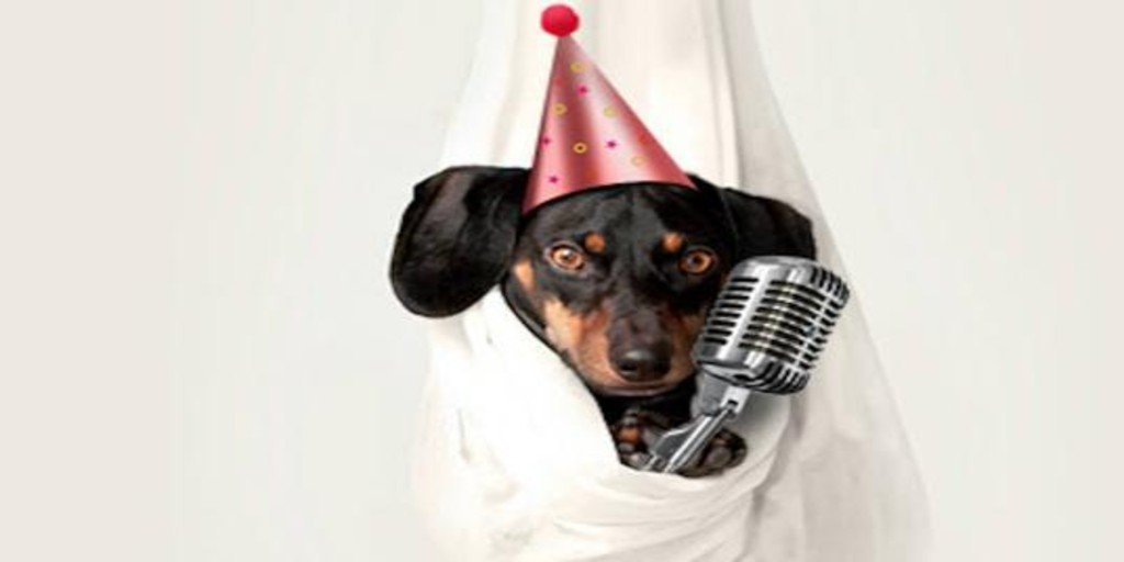 """Cultura Inquieta hosts a concert for """"happily adopted"""" dogs"""