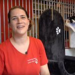 An apprenticeship as a zookeeper: more than just petting animals - Insurance for Pets