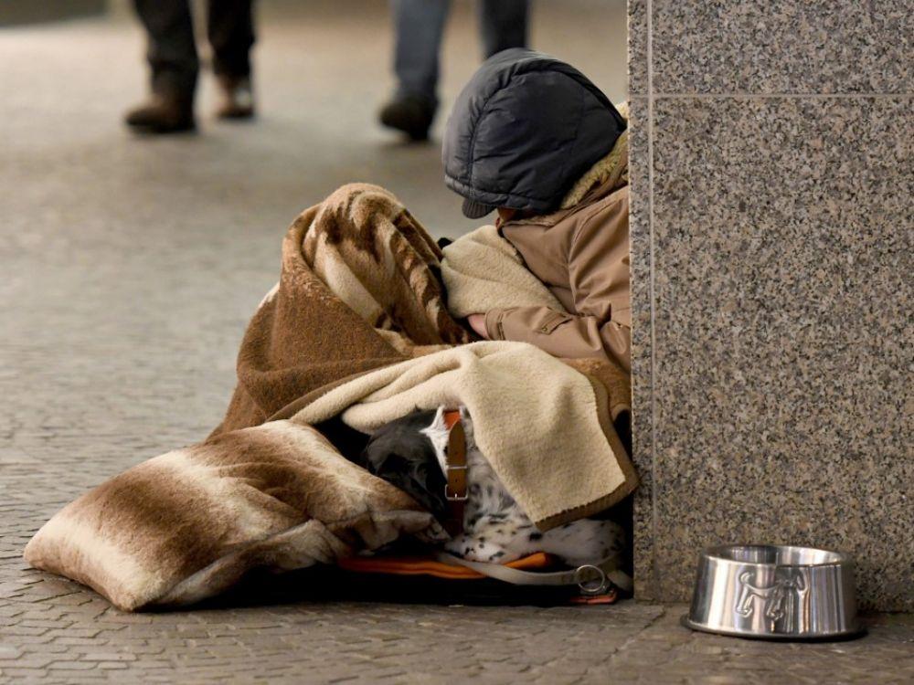 Vétérinaires pour tous : comment favoriser une médecine vétérinaire solidaire ?