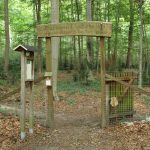The beloved pets find their final resting place in Lechlumer Holz - Insurance for Pets